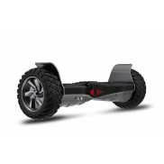 Smart Balance Off road TAOTAO + Балансир